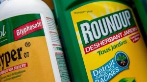 roundup glysophate