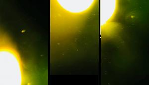 Hundreds-UFOs-from-Sun-4
