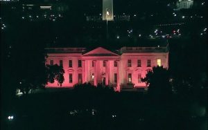red-white-house-rouge