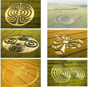 crop-circles-1-photo