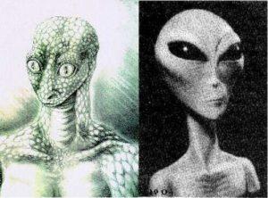 montage_draco_reptilian