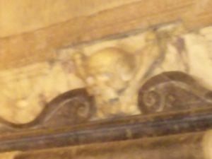 tete-skull-and-bones