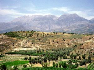 paysage-Mount-Zion