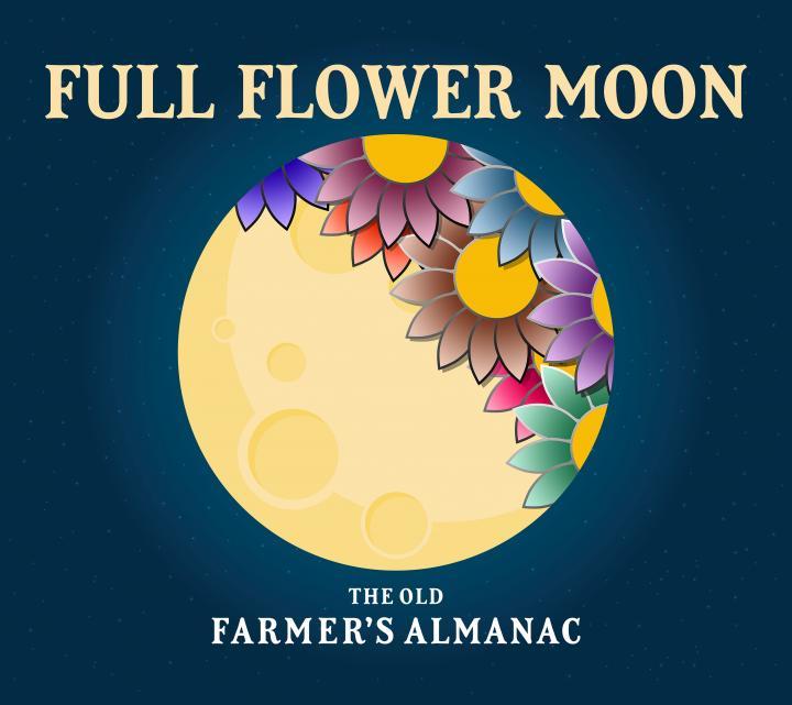 lune-full_flower