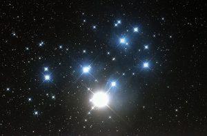 PLV1-stars