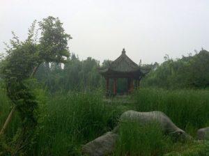 Dragon-Gate