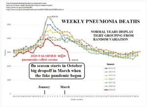 2020Pneumonia-data