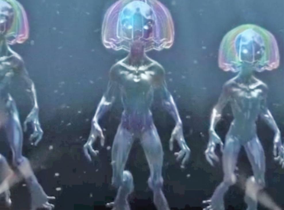 aquatic-Creatures